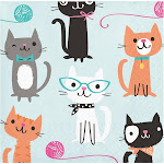 Cat Party Beverage Napkins, 16 ct by Creative Converting