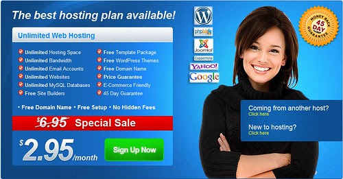 Cheap Unlimited Web Hosting with Flux Services