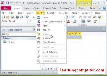 access database 2010 insert menu8