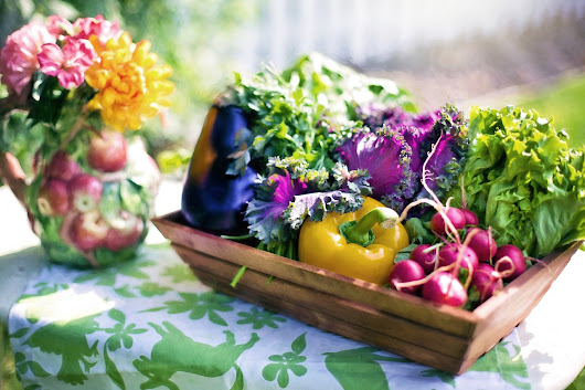 Tips on Growing a Vegetable Garden