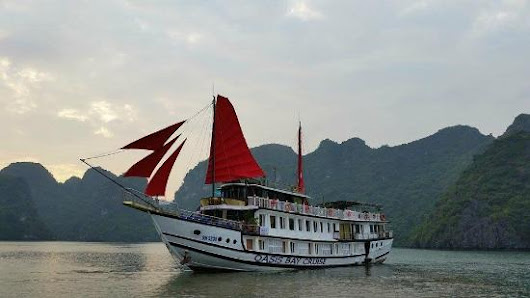 Oasis Bay Cruise Halong (Hanoi, Vietnam): Top Tips Before You Go - TripAdvisor