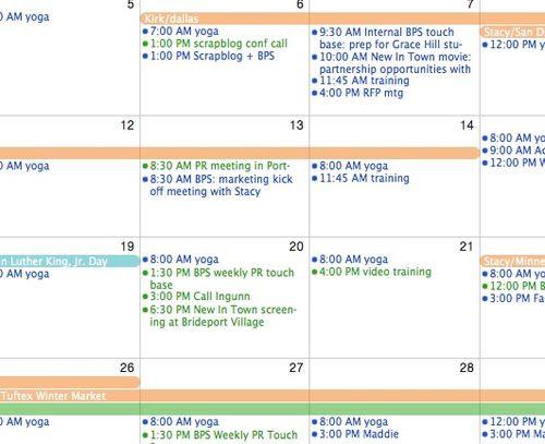 Daily Schedule Calendar   Daily Agenda Calendar