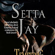 Tempting Ecstasy by Setta Jay