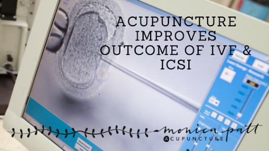 Acupuncture Improves Outcome of IVF and ICSI - Monica Patt Acupuncture