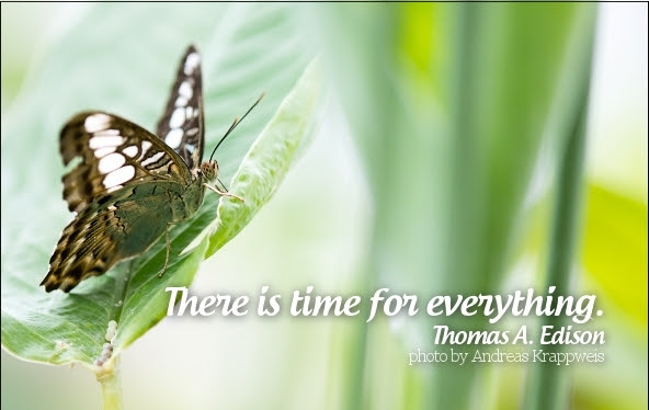 There Is A Time For Everything Thomas Alva Edison Picture Quotes
