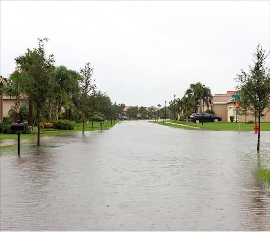 Trusted Water Damage Restoration Services in North Fort Myers | SERVPRO of Cape Coral