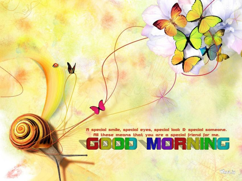 Colorful Good Morning Quotes With Colorful Butterfly