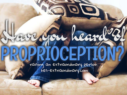 HAVE YOU HEARD OF PROPRIOCEPTION? - Raising An Extraordinary Person