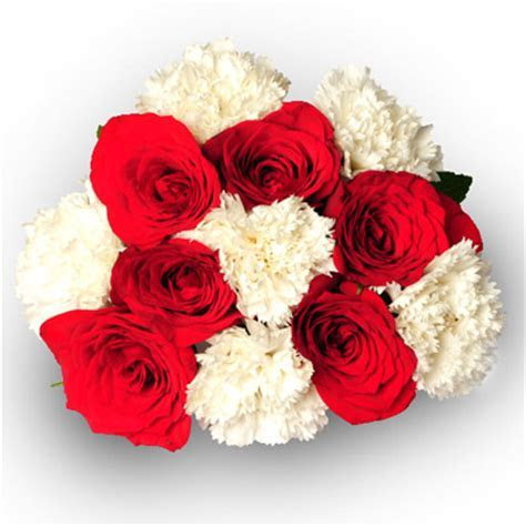 6 Roses and 6 Carnations