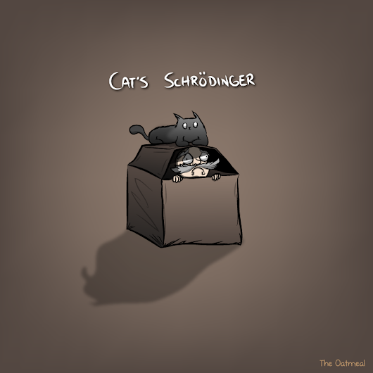 Cat's Schrödinger - The Oatmeal