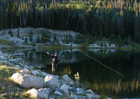 Choosing the Right Fly Rod - The Fly Fishing Basics