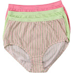 Hanes Cotton Brief Panties - 3 Pack, Assorted (D40L)