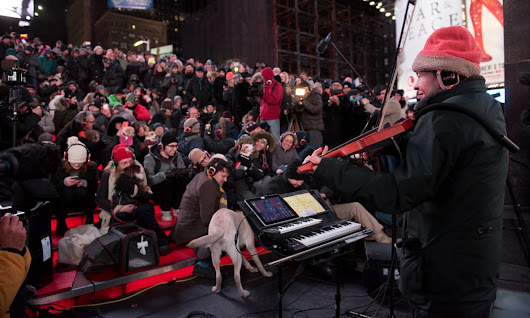 Laurie Anderson plays concert for dogs in New York's Times Square | Music | The Guardian