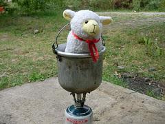 le mouton d'Edouardo en Assado