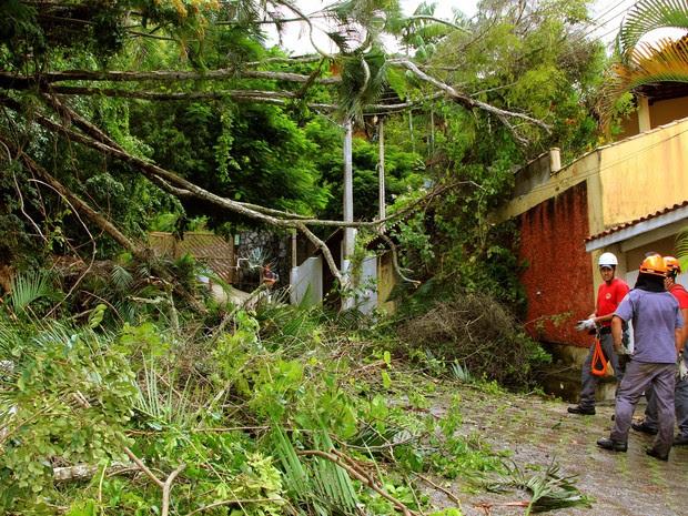 Chuva causou estragos na cidade (Foto: Prefeitura São Sebastião/André Santos)
