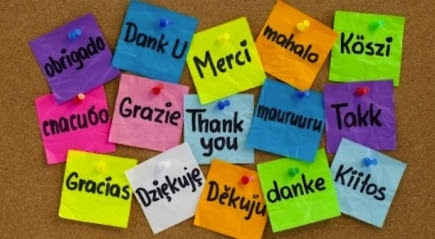 Five Ways to Cultivate Gratitude at Work