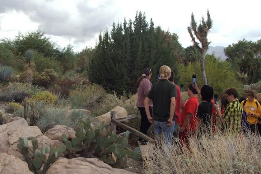 Desert EYE for Leaders: Environmental Youth Experience