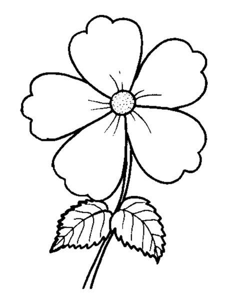 Sketsa Gambar Bunga Melati Mewarnai Bunga Tulip Contoh Jidiworkoutco