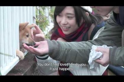 Film Kasumi Arimura Terbaru 2016