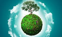 4 ejemplos para vivir ecológicamente