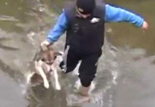Σκύλος ευγνωμονεί τους διασώστες του
