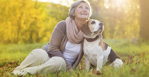 Our Top Pet Health Tips for Autumn