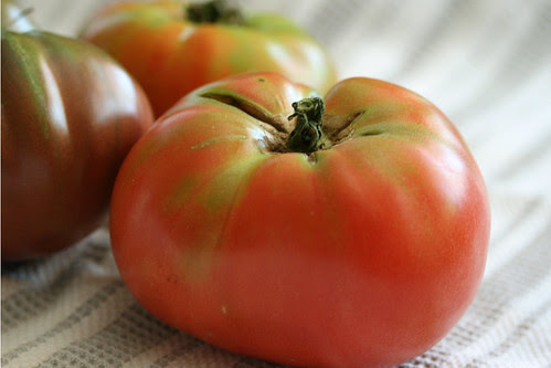 tomatoes 005