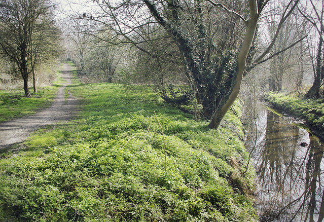 Hogsmill River and river walk