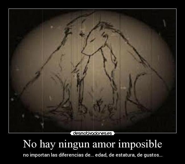 No Hay Ningun Amor Imposible Desmotivaciones