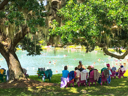 Take a Break from Winter at Warm Mineral Springs