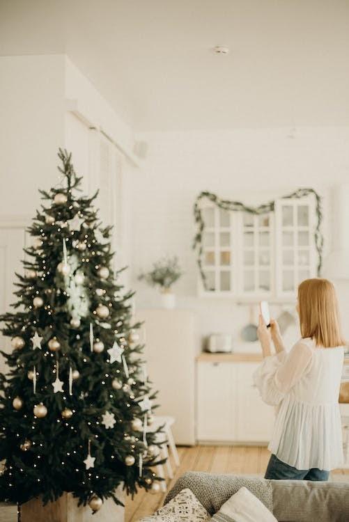 christmas tree decomesh