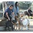 Riverside boosts punishment for dangerous dogs | Riverside Today