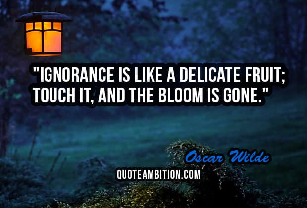 Top 100 Ignorance Quotes And Sayings