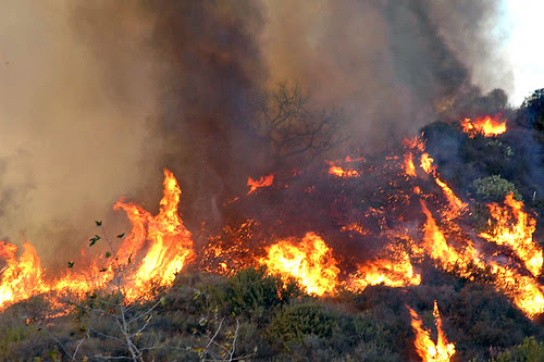 FHR_Fire(125) by Miro-Foto.