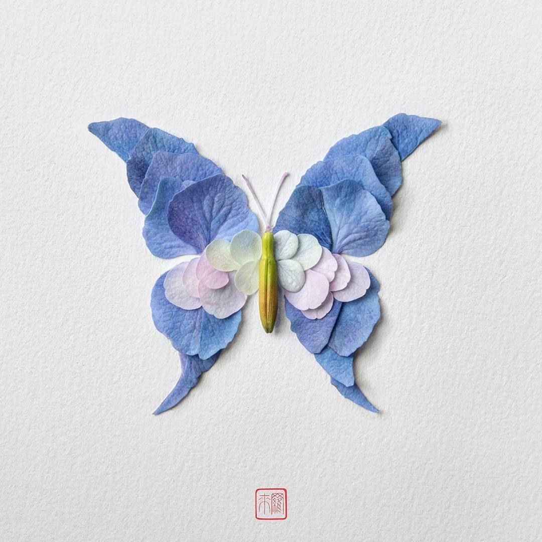 Farfalle e insetti composti da petali e foglie di Raku Inoue