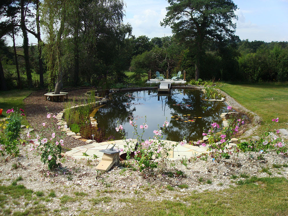 Backyard ideas on Pinterest | Natural Swimming Pools, Natural Pools