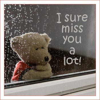 I Sure Miss You A Lot - Teddy Bear