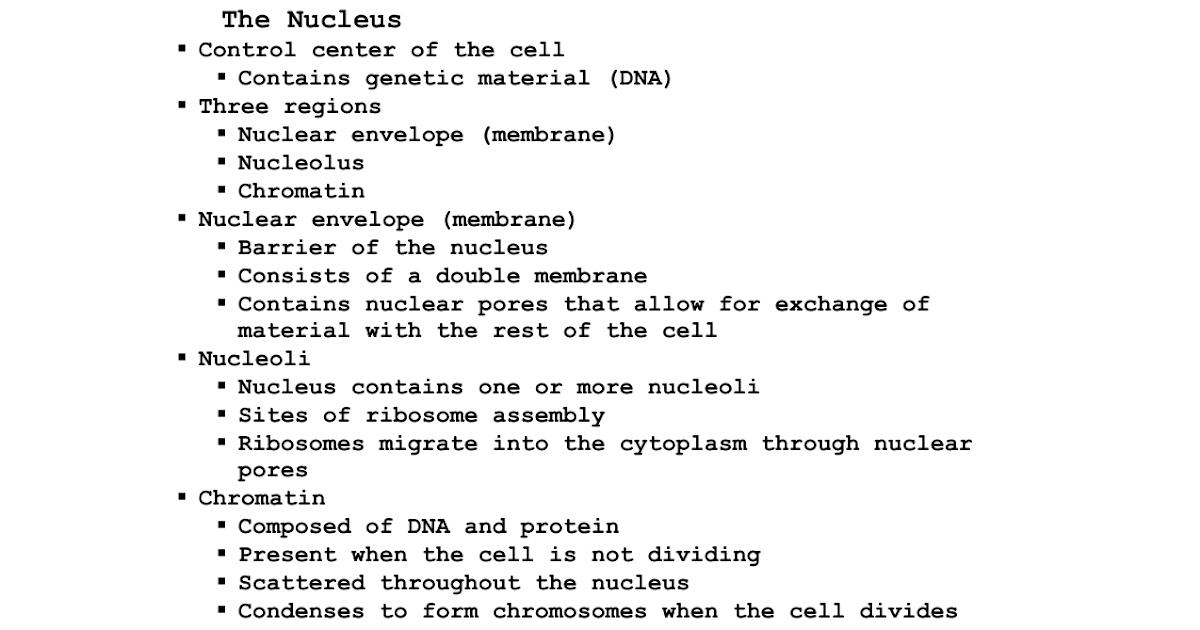 35 Chapter 3 Cells And Tissues Worksheet - Worksheet ...