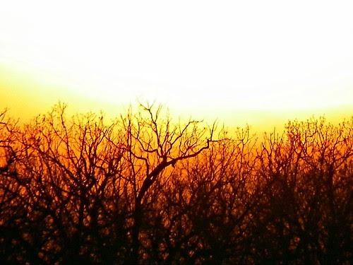 3 25 2010 Saganashkee Slought sunset (13)