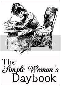 photo simple-woman-daybook-large_zpsc83krfbg.jpg