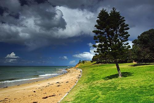Cosy Corner, Zeally Bay, Torquay, Victoria, Australia IMG_2867_Torquay