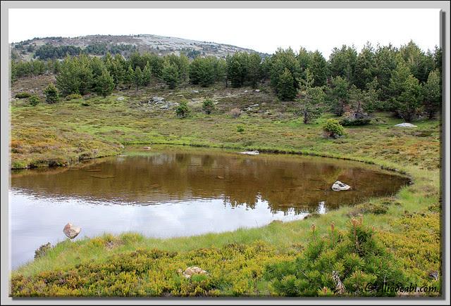 Picos de Urbión 14
