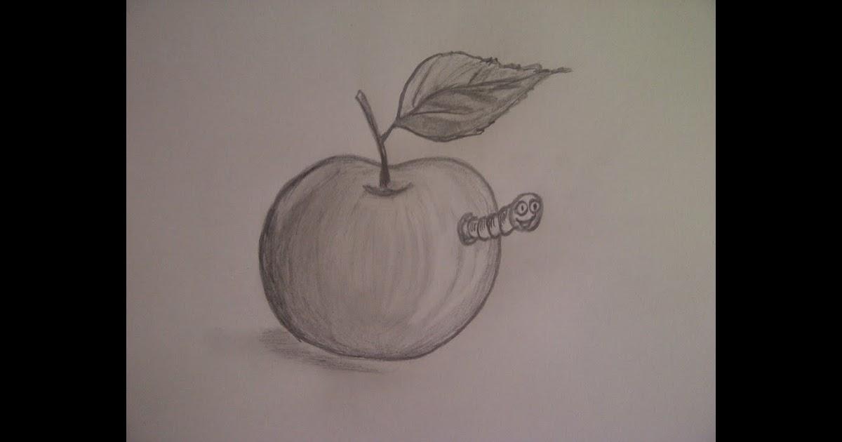 Zeichnen Für Anfänger Mit Bleistift