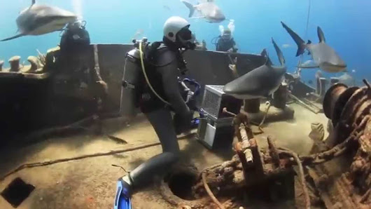 Shark Seeks Help From Divers [video] - For Scuba Divers