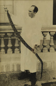 Clodomiro serpiente.jpg