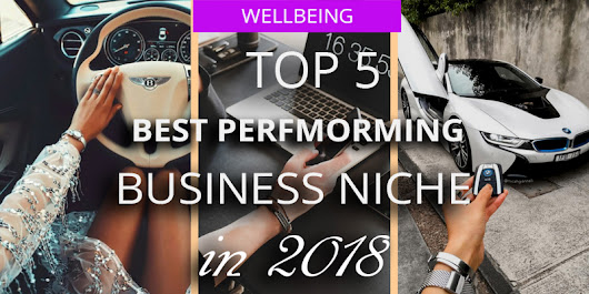 5 Best Performing Businesses Niche in 2018
