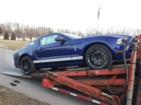 deep impact blue shelby gt