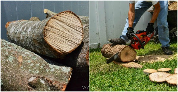 How to Create a Natural Log Pathway