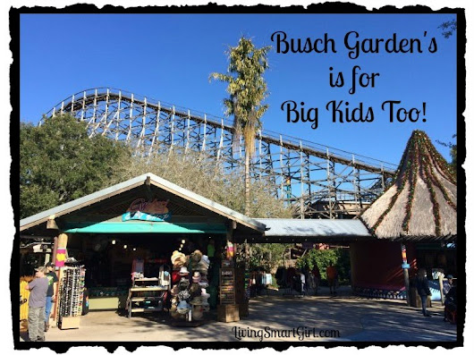 Busch Gardens is for Big Kids Too! - Living Smart Girl