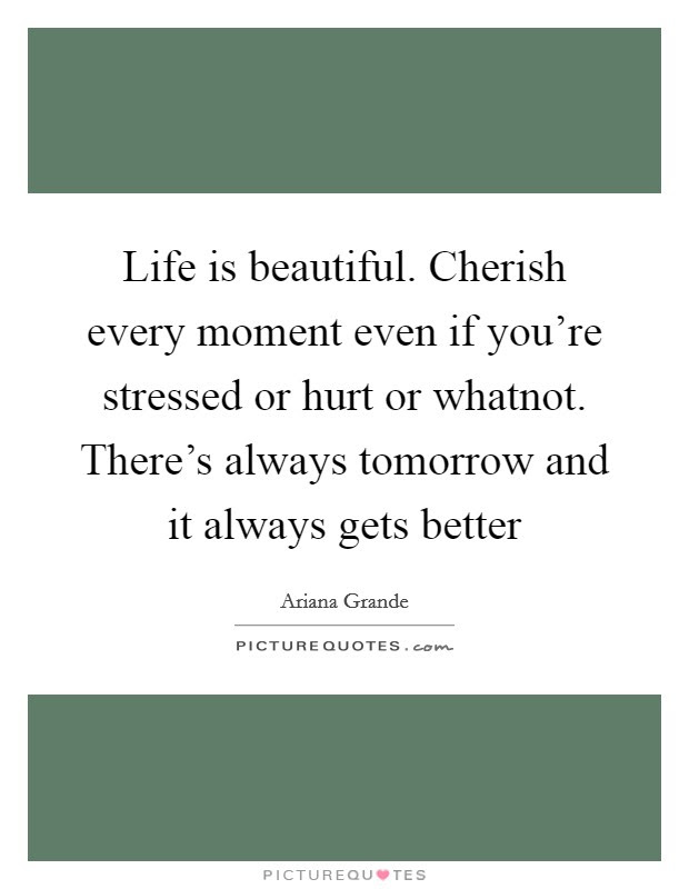 Life Is Beautiful Cherish Every Moment Even If Youre Stressed
